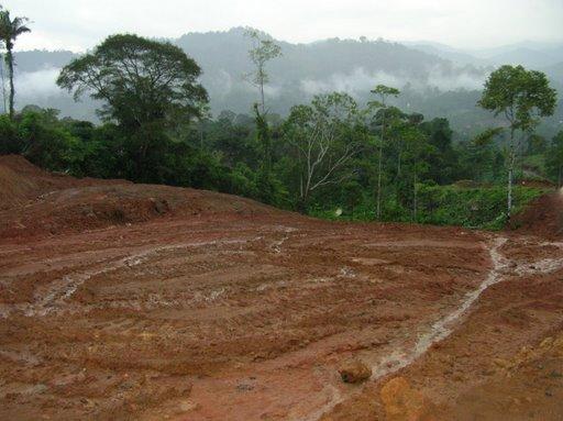 El suelo se erosiona ciencias naturales online for Tierra suelo wallpaper