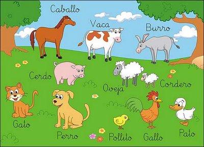 los animales grupos: