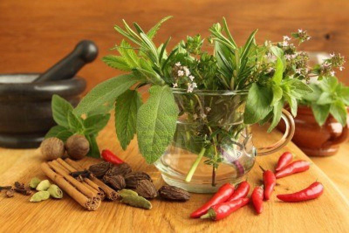 13897045 especias y manojo de hierbas aromaticas frescas for Cultivo de plantas aromaticas y especias