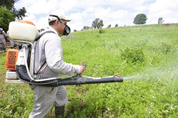 fertilizantes-600×400